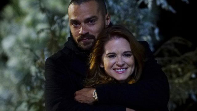 'Grey's Anatomy': How Sarah Drew Really Feels About April and Jackson's Ending