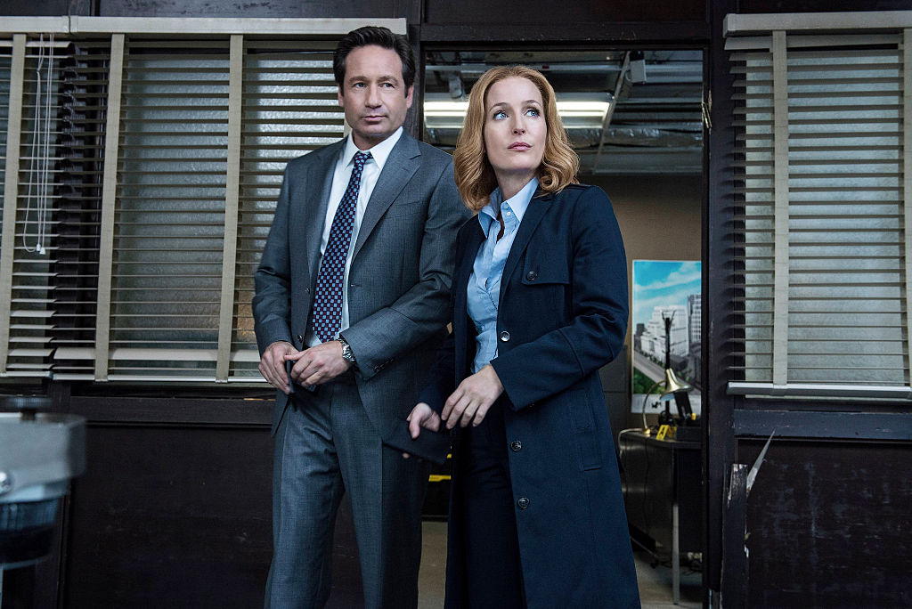 The X-Files cast David Duchovny and Gillian Anderson on The X-Files Season 10