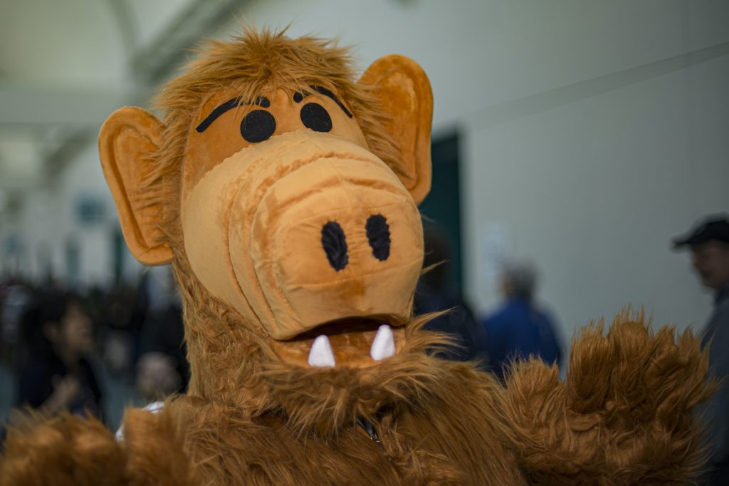 Alf stuffed animal in front of a blurred background