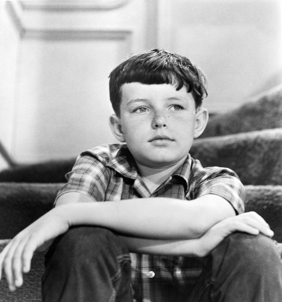 Jerry Mathers as Beaver Cleaver on 'Leave It To Beaver'