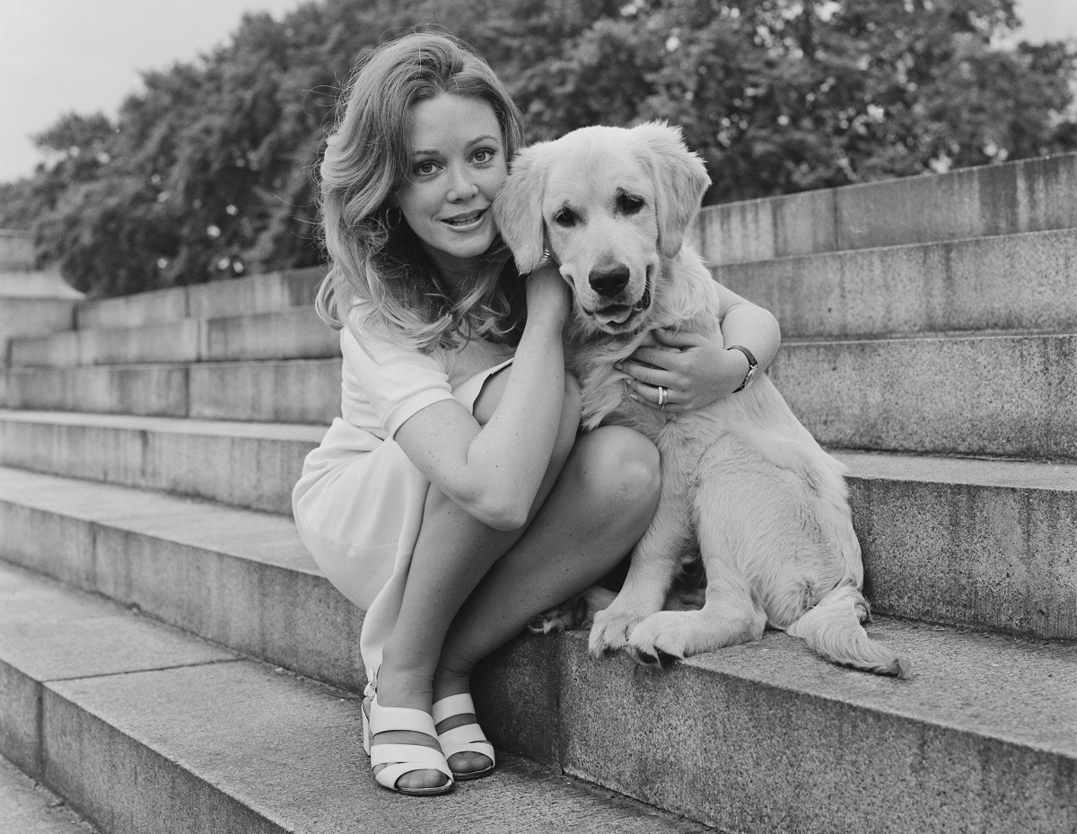 Elaine Taylor poses with a retriever dog sitting on a flight of stone steps, 29th June 1972.