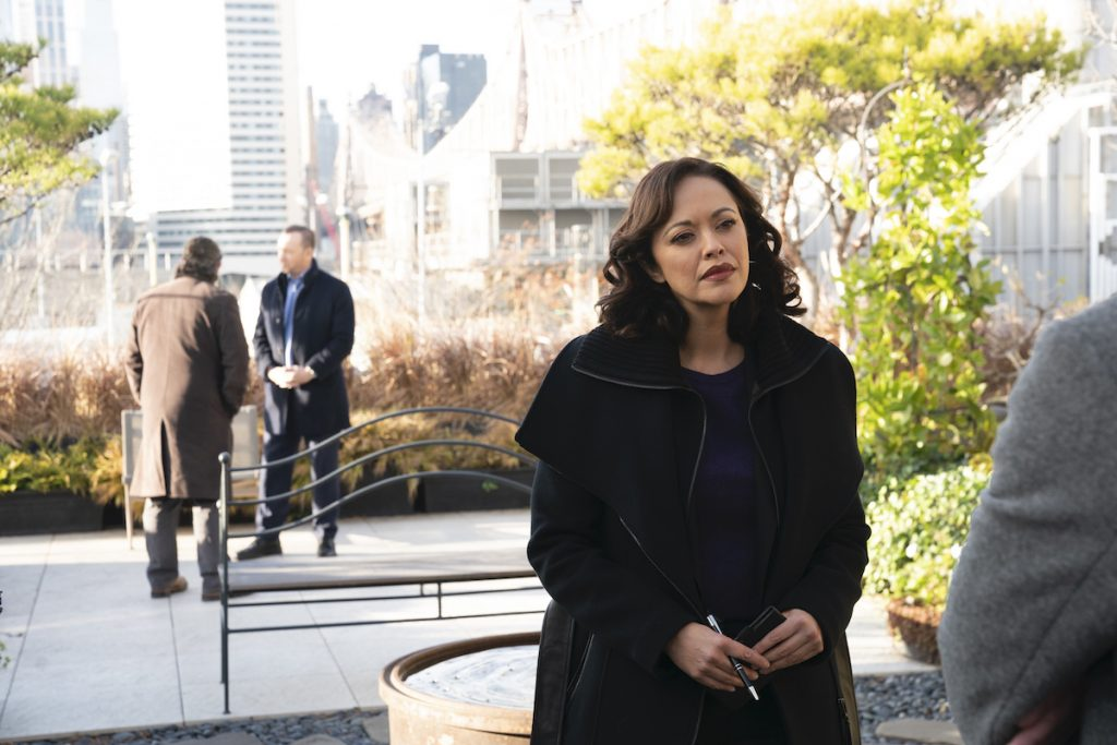 Donnie Wahlberg as Danny Reagan stands in the background talking to someone and Marisa Ramirez as Det. Maria Baez stands in a park wearing a coat on 'Blue Bloods'