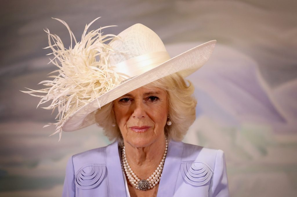 Camilla Parker Bowles in pink feathered fascinator and and lavender blazer during visit to Canada