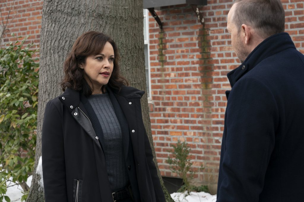 Marisa Ramirez as Maria Baez and Donnie Wahlberg as Danny talk outside on Blue Bloods