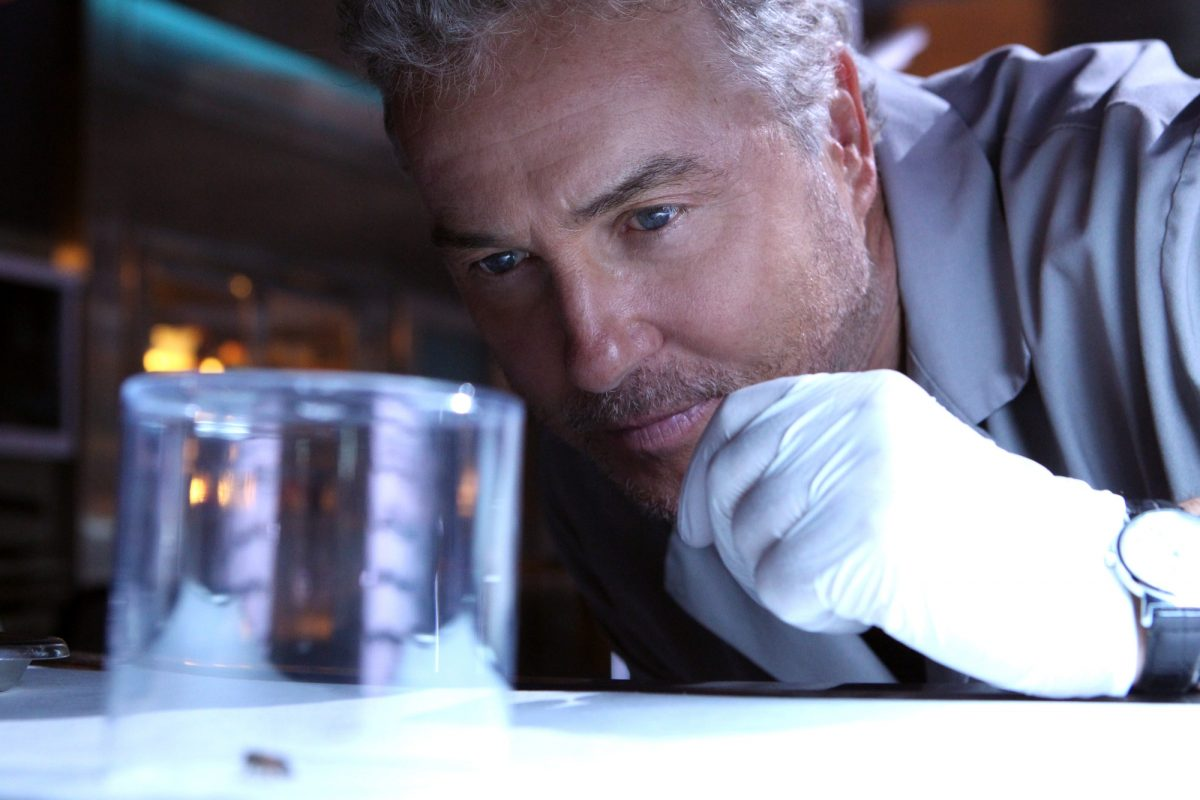 Close up of Gil Grissom looking at a beaker in CSI episode