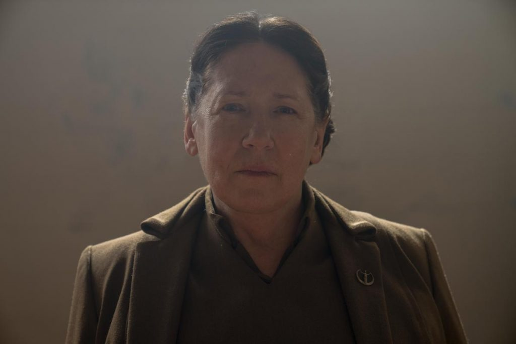 Aunt Lydia (Ann Dowd) stands in a brown uniform and smirks in 'The Handmaid's Tale'