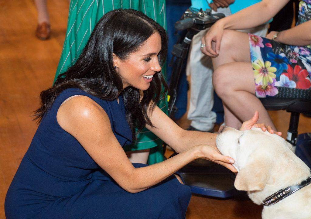Meghan, Duchess of Sussex strokes a guide dog at a reception given by the Governor of Victoria, at Government House on October 18, 2018 in Melbourne, Australia.