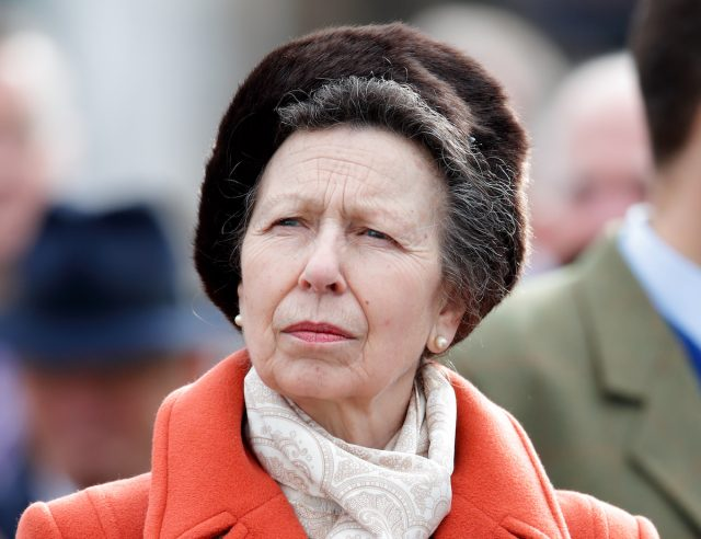 Princess Anne Said She Would 'Get in Touch' With Prince Harry and Meghan Markle if Needed