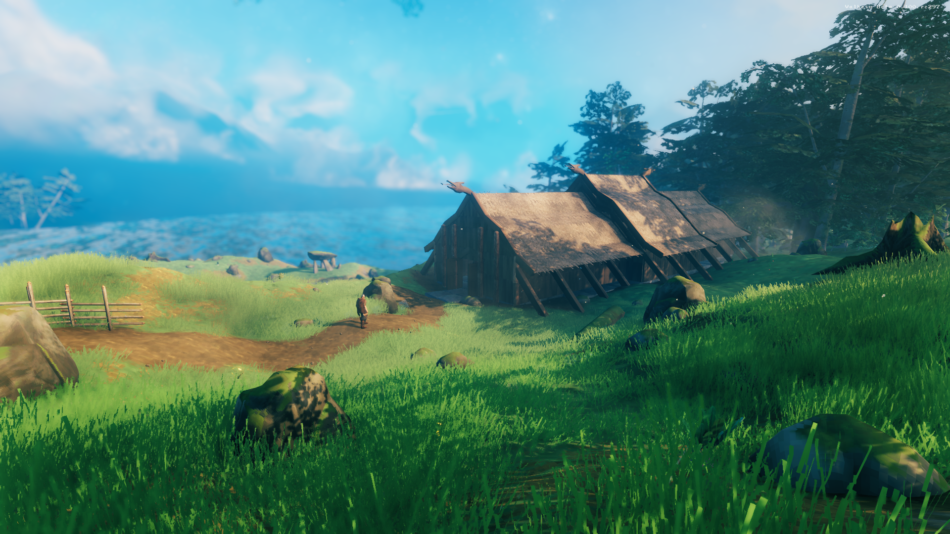 A player explores the meadows in Iron Gate's Valheim