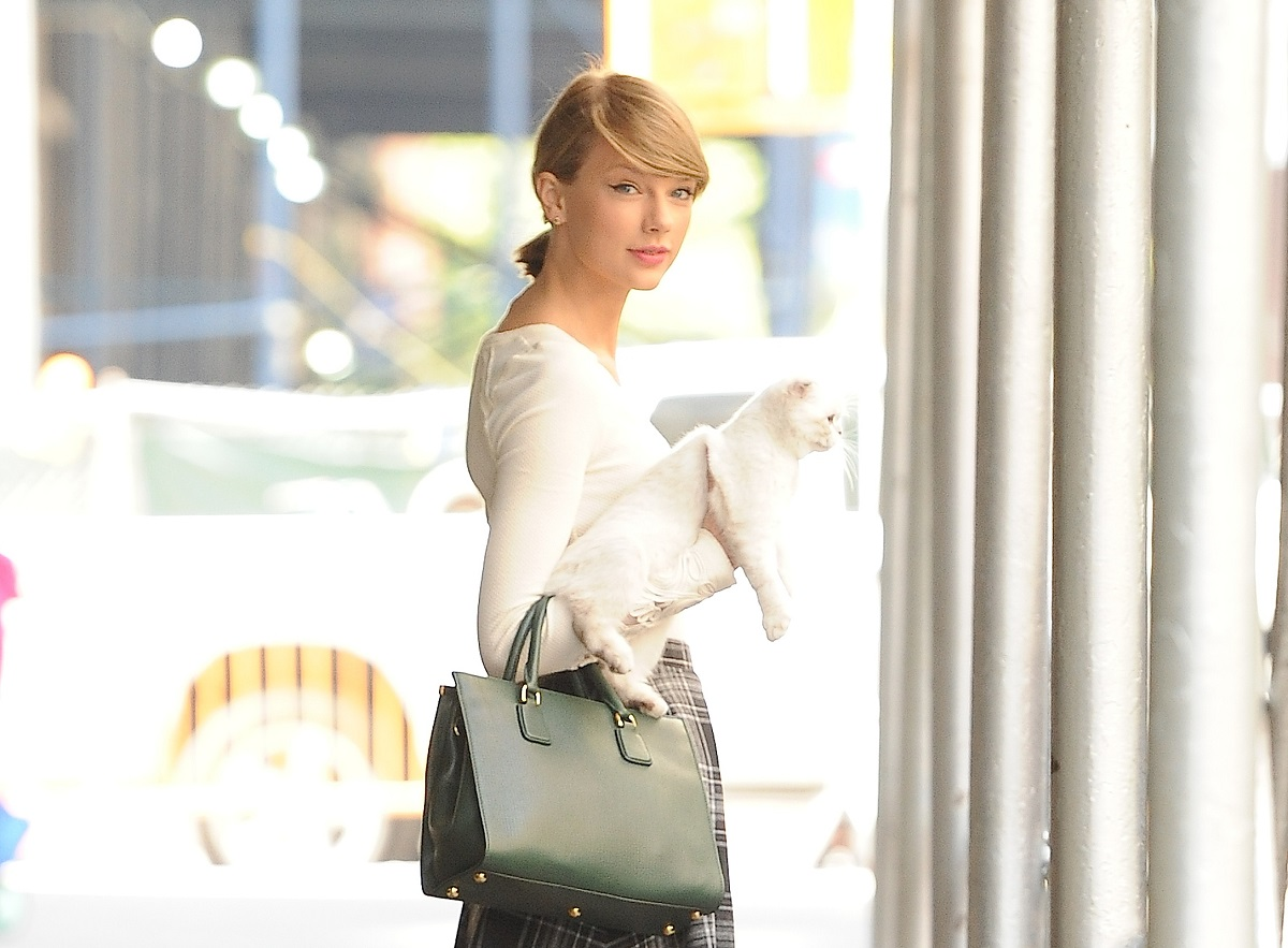 Taylor Swift and her cat, Olivia, are seen in Soho on September 16, 2014, in New York City.