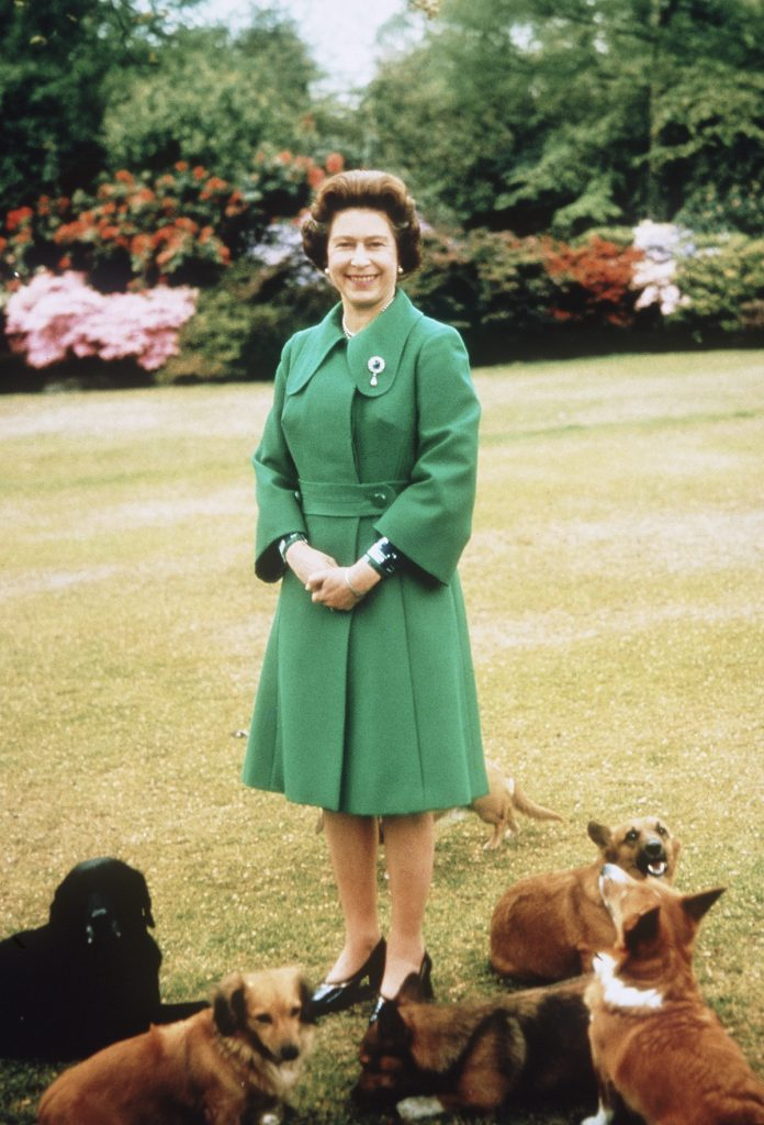 Queen Elizabeth surrounded by corgis in 1980