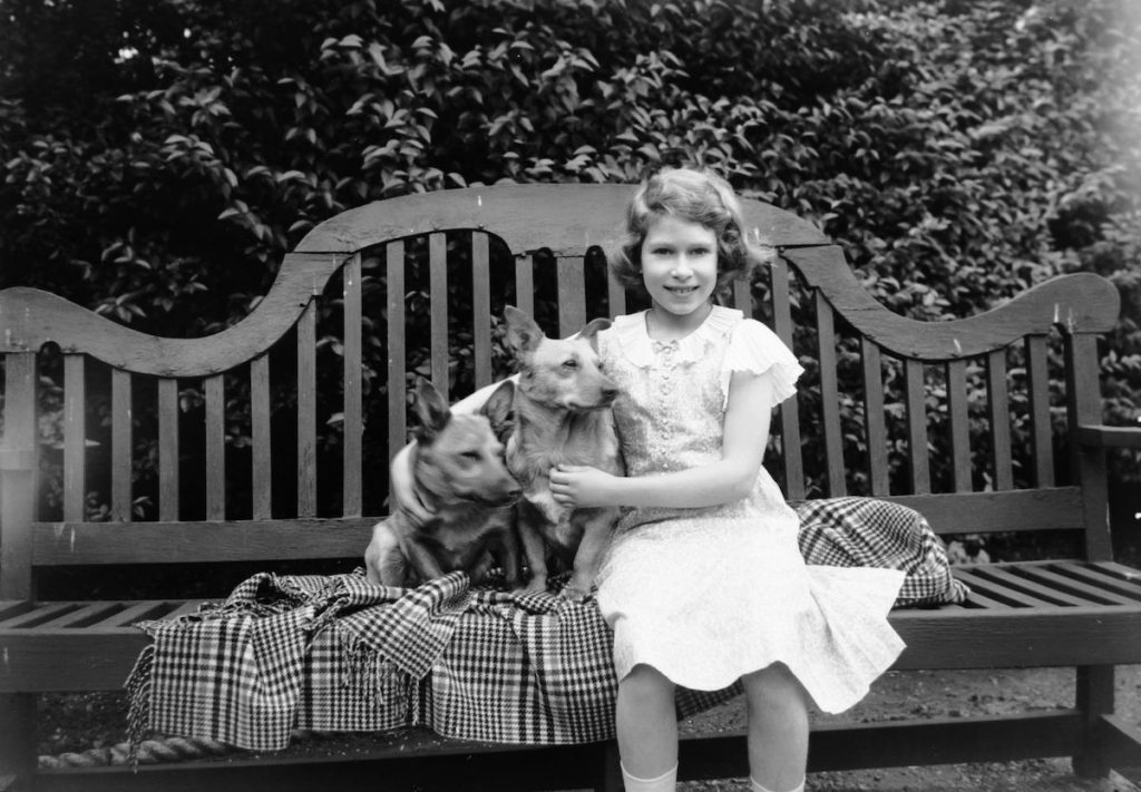 Queen Elizabeth II sits with two corgis in 1936