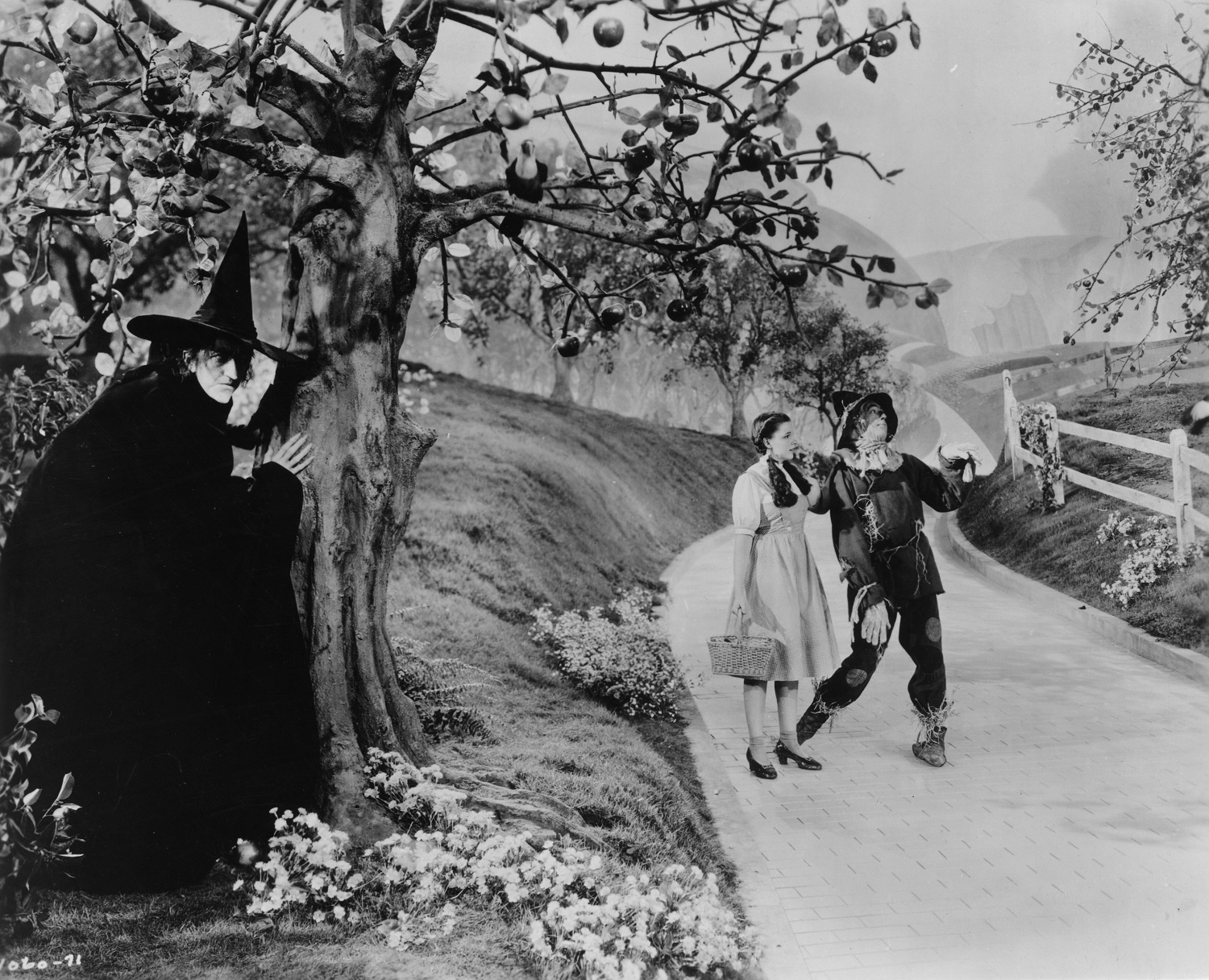 Margaret Hamilton, as The Wicked Witch of the West, hides behind a tree from Dorothy, played by Judy Garland (1922 - 1969), and the scarecrow as they make their way down the yellow brick road in a scene from The Wizard of Oz