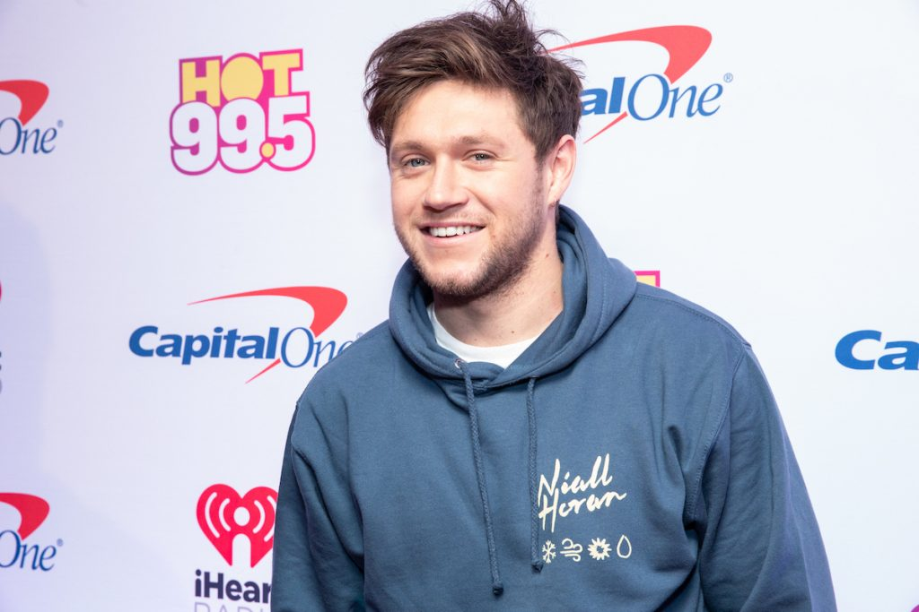 Niall Horan from One Direction in a blue sweatshirt smiling