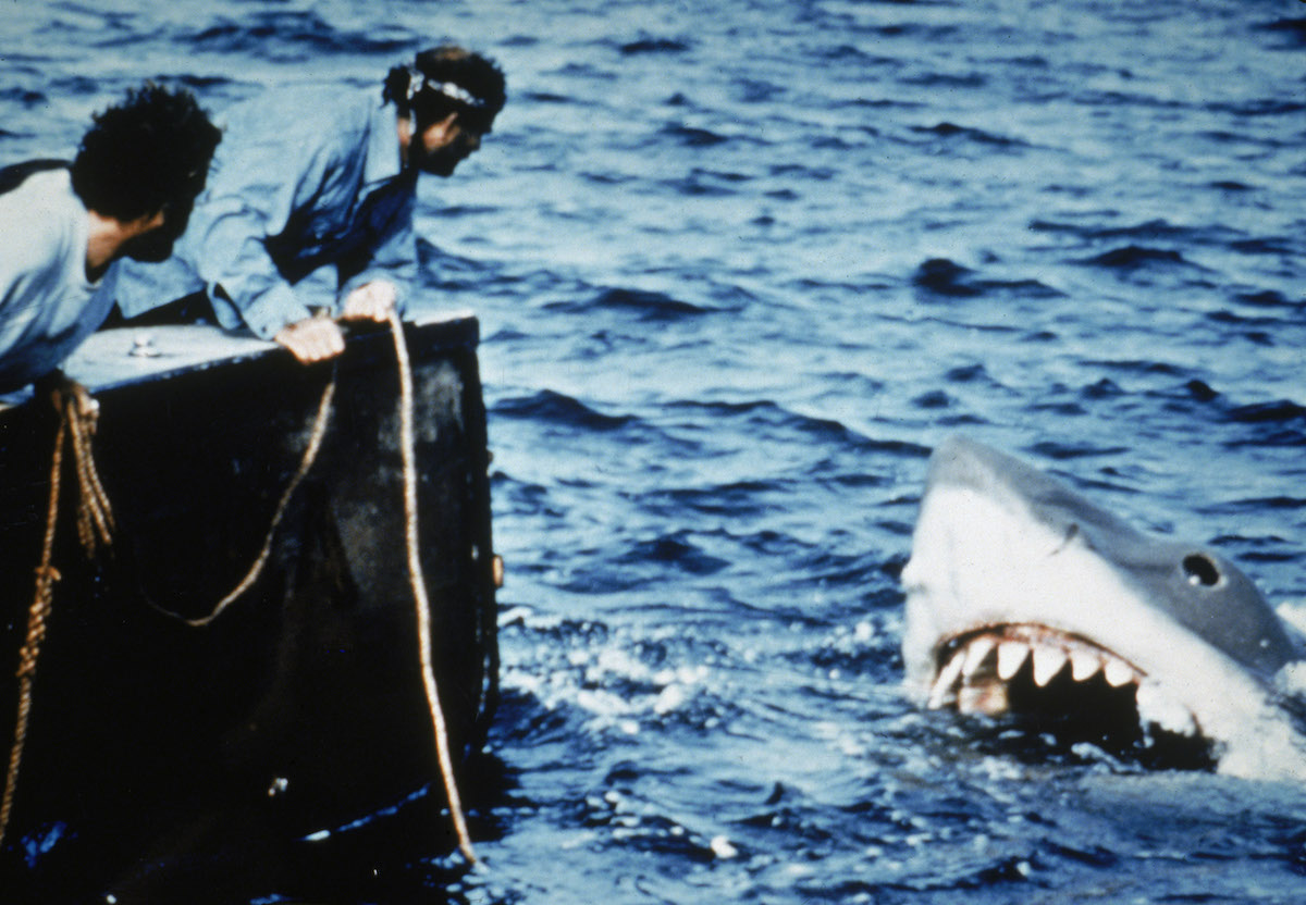Richard Dreyfuss and Robert Shaw lean off the back of their boat, holding ropes as they watch the giant Great White shark emerge from the water in a scene from the Steven Spielberg movie 'Jaws'