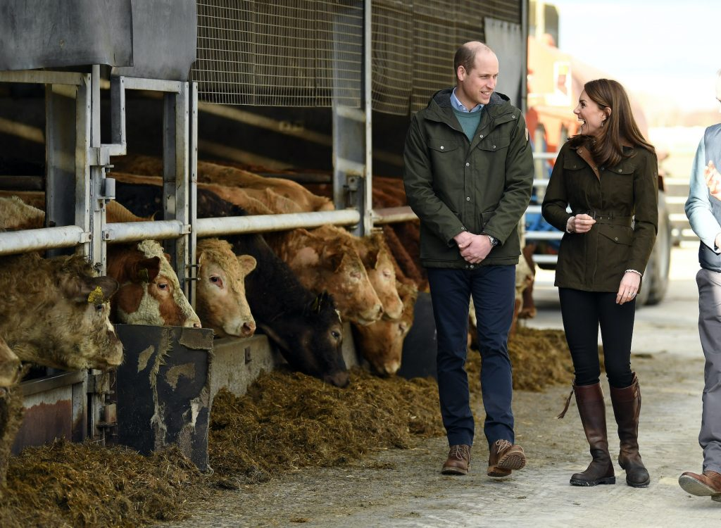 Prince William and Kate Middleton walking though a farm