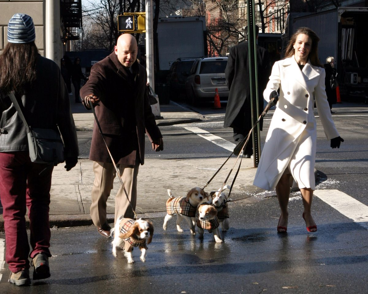 Evan Handler as Harry Goldenblatt and Kristin Davis as Charlotte York with their dogs walk down a Manhattan Street during the filming of season 6 of 'Sex and the City'