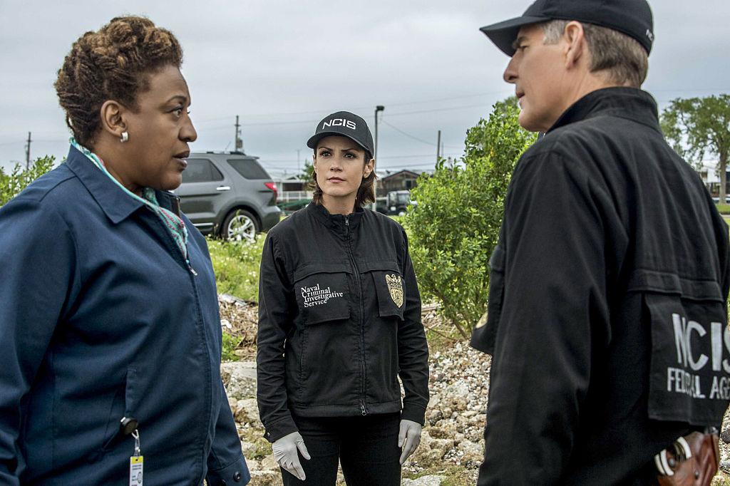 CCH Pounder as Dr. Loretta Wade, Zoe McLellan as Special Agent Meredith Brody, and Scott Bakula as Special Agent Dwayne Pride talk in the field while investigating a case.